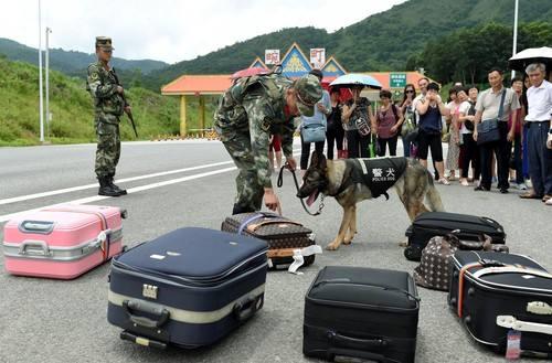 中缅边境线上的缉毒玫瑰:危险时心里曾拟过遗书