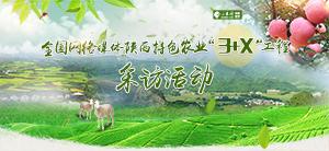"""全国网络媒体陕西特色农业""""3+X""""工程采访活动"""