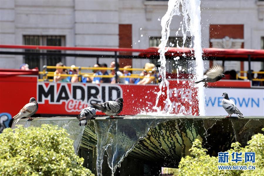 馬德里:高溫持續