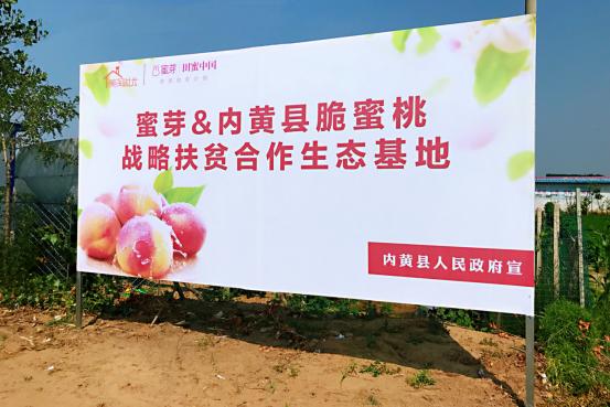 蜜芽与河南省内黄县人民政府达成战略合作 建设扶贫生态基地1549