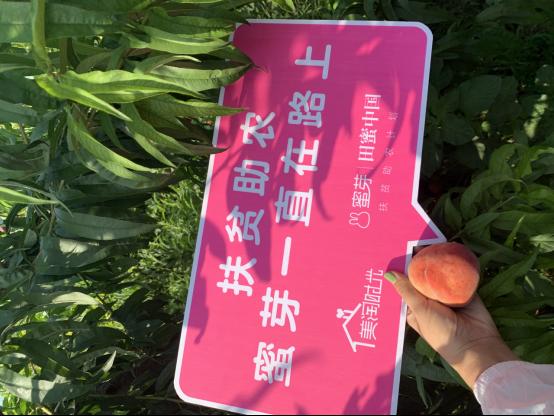 蜜芽与河南省内黄县人民政府达成战略合作 建设扶贫生态基地1905