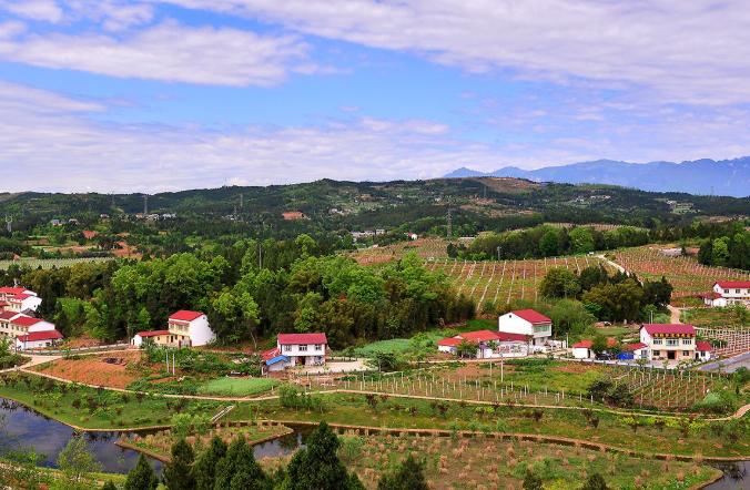 问题村变美丽示范村 王上村的乡村振兴之路