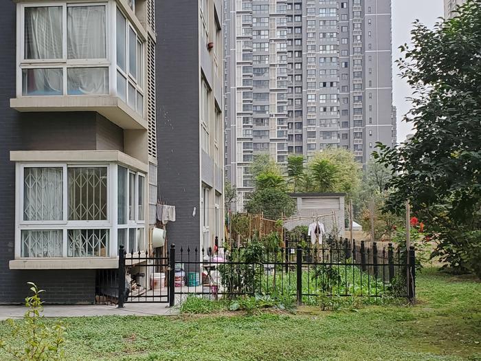 一层的圈绿地  楼顶的封露台     中登文景时代小区有业主把公共空间据为己有