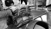 42户贫困家庭喜领过冬物资