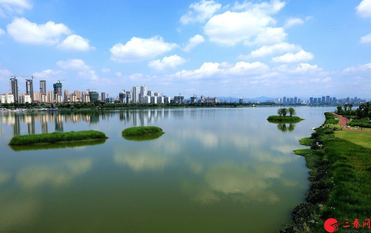 陕西汉中:红梅花开报春来