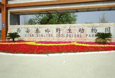 西安秦岭野生动物园20日起免费局部开放