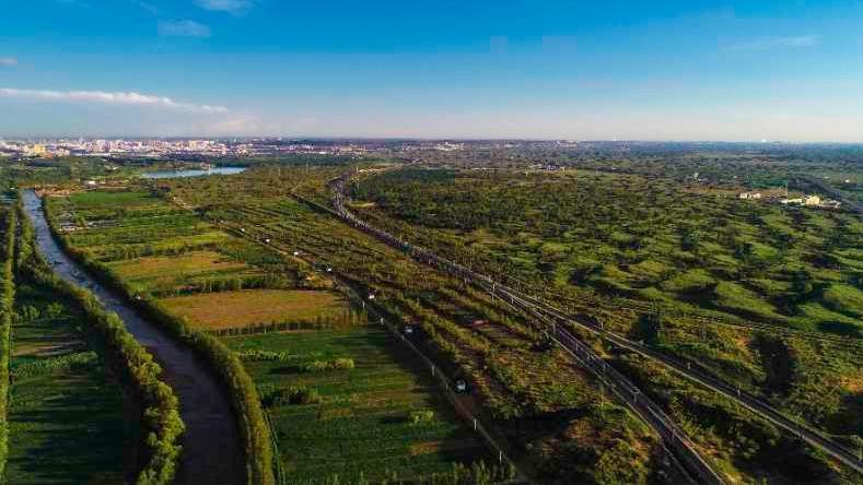 陜西沙化土地年均減少17.8萬畝  綠色版圖向北推進400公里
