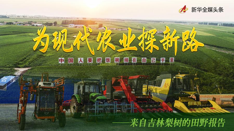 为现代农业探新路——来自吉林梨树的田野报告