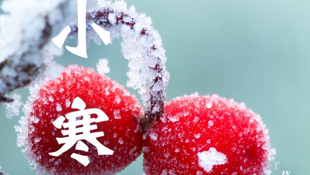 今日小寒,一年中最冷的时段到々了