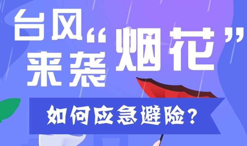 """【应急科普】台风""""烟花""""来袭,如何应急避险?"""