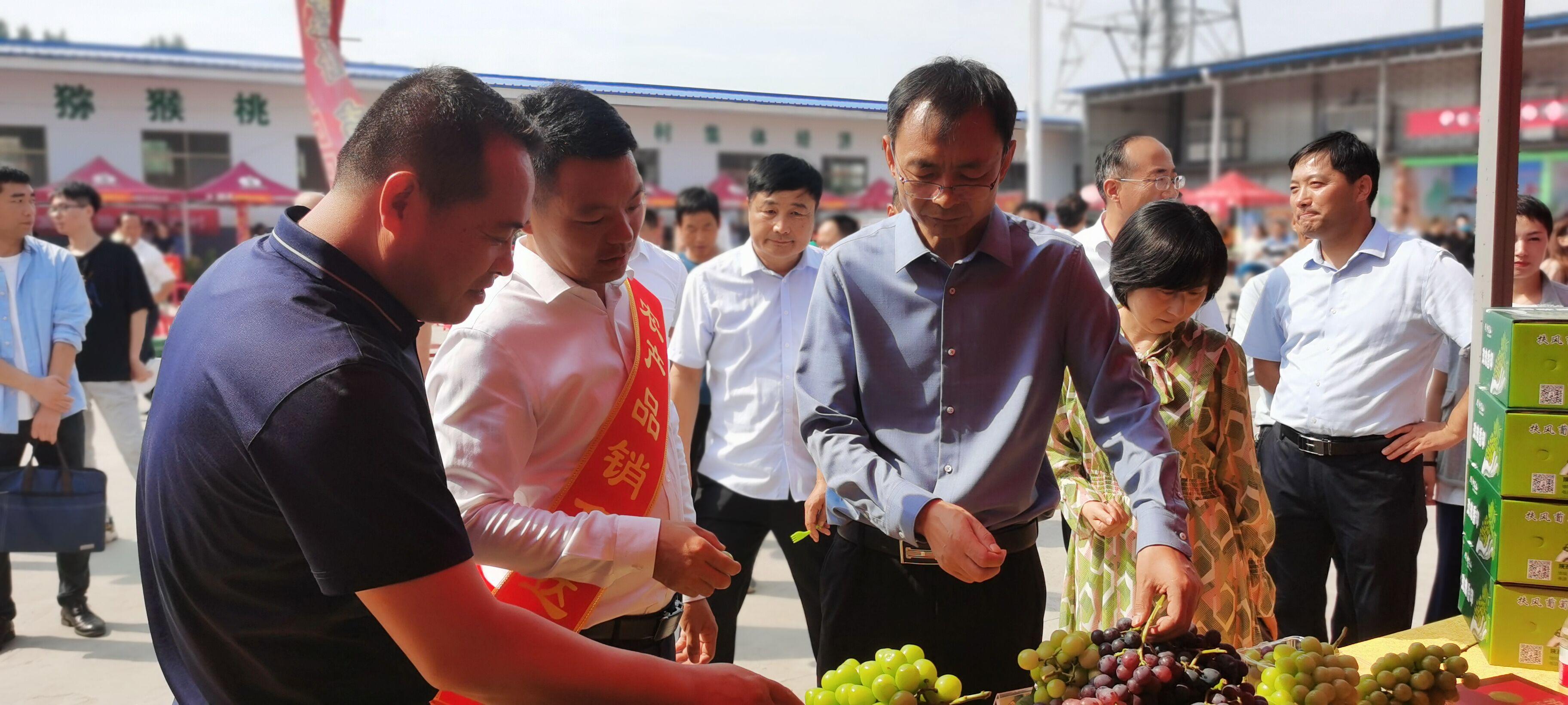 """欢喜庆丰收!扶风县2021年""""中国农民丰收节""""活动启动"""