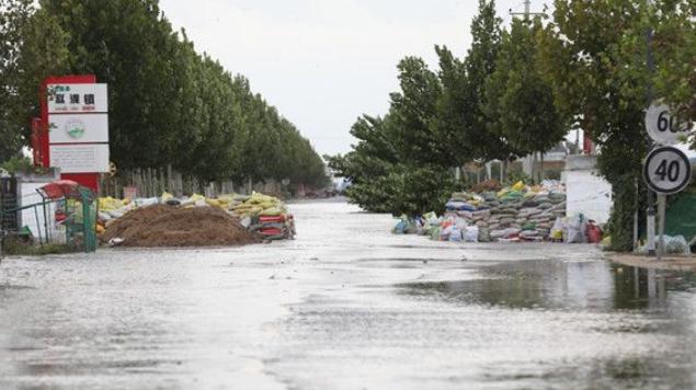 直击渭南大荔汛情:累计受灾23.9万人 49.1万亩农田被淹